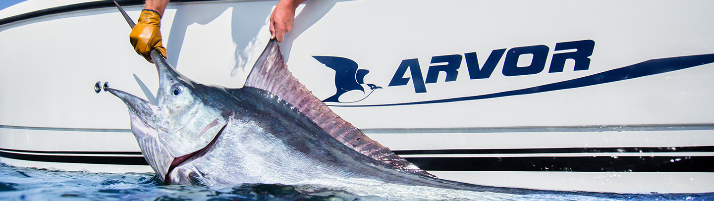 Marlin-Arvor-Banner-500px-High